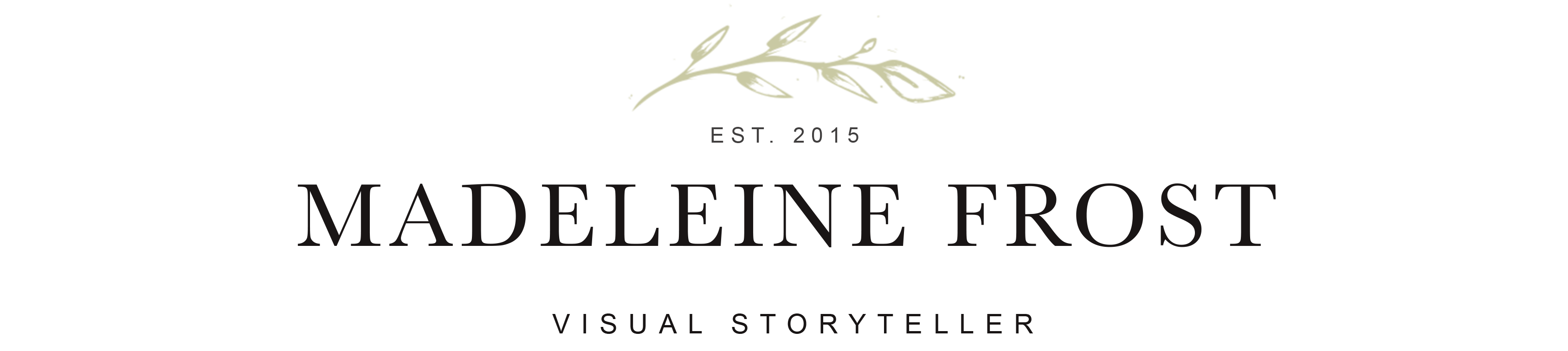 Madeleine Frost Visual Storyteller